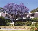 Kleinfontein Farm, Wellington Accommodation